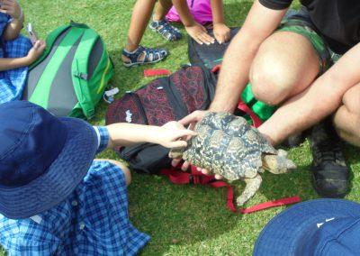 reptile park 14
