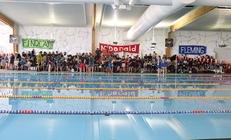 Fun and Excitement at Swimming Sports Day